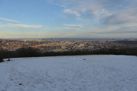 Wandern in Wien: Rund um den Lainzer Tiergarten