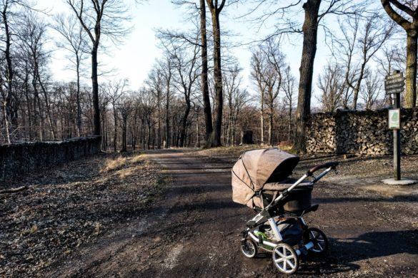 Spazieren im Lainzer Tiergarten mit Kinderwagen: Eine Frage des Willens