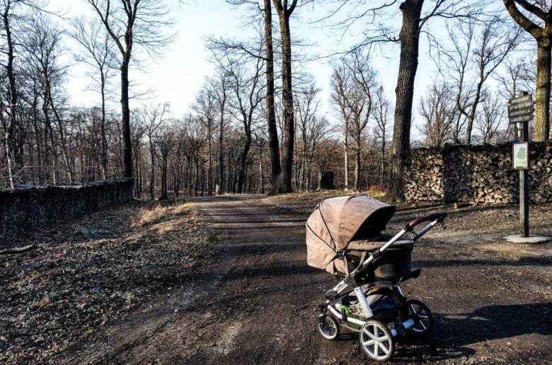 Mit Kinderwagen im Lainzer Tiergarten.