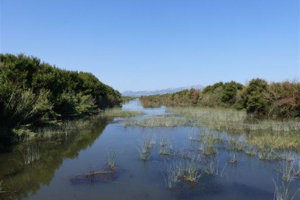 3 Ausflugsziele, die man ohne Auto von Can Picafort erreicht